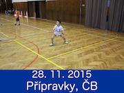 28.11.15 - TURNAJ PŘÍPRAVEK, ČESKÉ BUDĚJOVICE